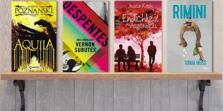 Neue Woche, neue Bücher #33: Frischer Lesestoff!