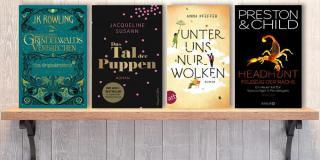 Neue Woche, neue Bücher #49: Frischer Lesestoff! Neue Bücher im Dezember