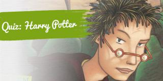 Artikelbild zum Quiz Harry Potter Band 1 bis 7