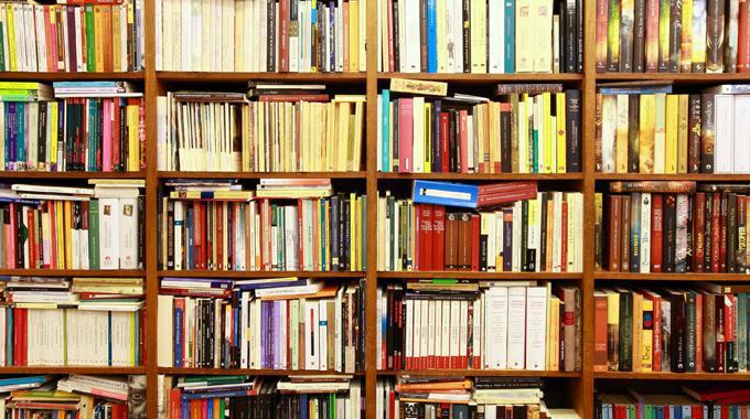 Der Inhalt meines Bücherregals