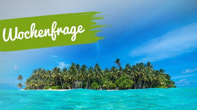 Artikelbild zur Wochenfrage: Welches Buch würdest du auf eine einsame Insel mitnehmen? - Foto von gawriloff - istockphoto