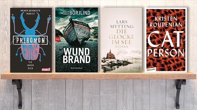 Neue Woche, neue Bücher #03: Frischer Lesestoff! Neue Bücher im Januar 2019