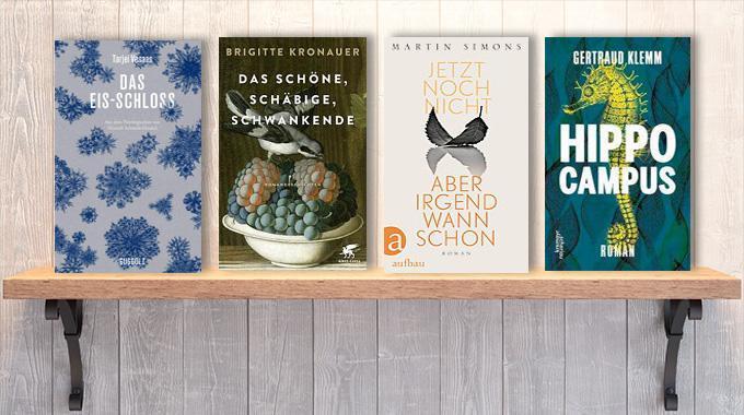 Neue Woche, neue Bücher #32: Frischer Lesestoff! Neue Bücher im August