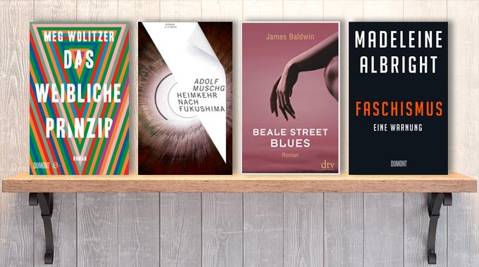 Neue Woche, neue Bücher #29: Frischer Lesestoff! Neue Bücher im Juli