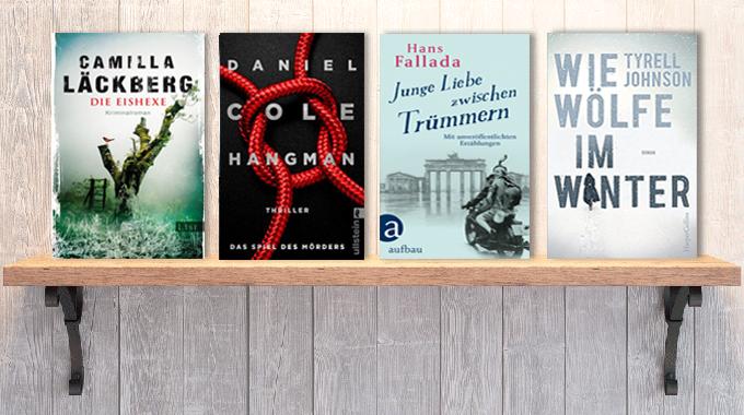 Neue Woche, neue Bücher #1: Frischer Lesestoff! Januar 2018