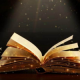 Desiree - Romantic Bookfan