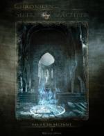 Die Chroniken der Seelenwächter - Band 1: Die Suche beginnt (Urban Fantasy)