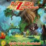 Potz Blitz - Die Zauber-Akademie - Gefahr für das Wunderland, 1 Audio-CD