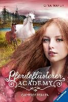 Pferdeflüsterer-Academy - Calypsos Fohlen