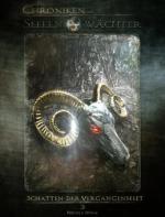Die Chroniken der Seelenwächter - Band 3: Schatten der Vergangenheit (Urban Fantasy)
