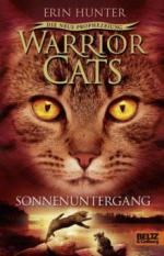 Warrior Cats, Die neue Prophezeiung, Sonnenuntergang