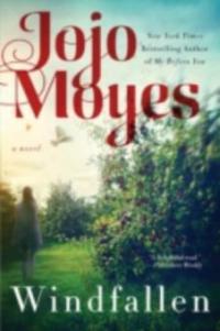 Windfallen - Jojo Moyes