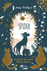 Spider. Die große Reise eines kleinen Hundes - Andy Mulligan