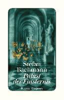 Palast der Finsternis - Stefan Bachmann
