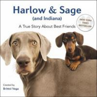 Harlow & Sage (and Indiana) - Brittni Vega