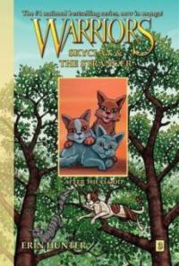 Warriors, SkyClan & the Stranger, After the Flood - Erin Hunter