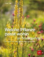 Welche Pflanze passt wohin im Naturgarten? - Paula Polak