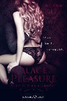 Palace of Pleasure: Club der Milliardäre - Bobbie Kitt