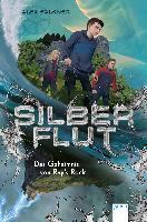 Silberflut - Das Geheimnis von Ray's Rock. Bd.1 - Alex Falkner
