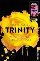 Trinity 01 - Verzehrende Leidenschaft - Audrey Carlan